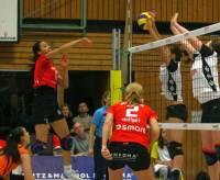 MTV Stuttgart 1843 e.V. - Allianz Volley Stuttgart gegen SC Potsdam