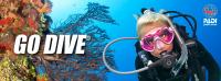 MTV Stuttgart 1843 e.V. - Erlebe den Zauber der Unterwasserwelt