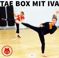 MTV Stuttgart 1843 e.V. - Tae Box